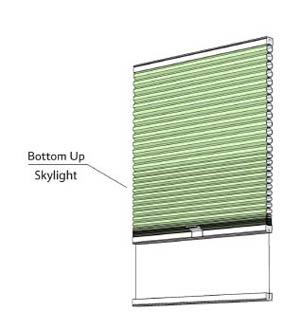 Bottom Up - Skylight