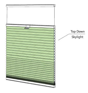 Top Down - Skylight