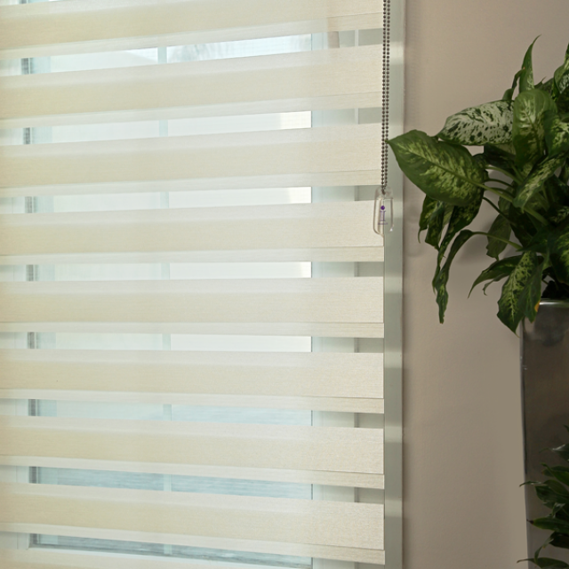 Frida Ivory duplex blinds