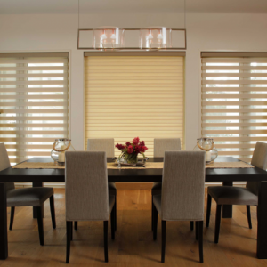 Reagan Linen duplex blinds