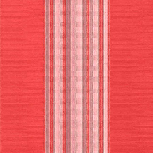 Stripe-Red-Vertex-Blind
